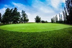 Surrey-Golf-Club-(21)